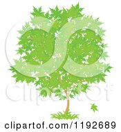 Cartoon Of A Maple Tree With Green Leaves Royalty Free Vector Clipart