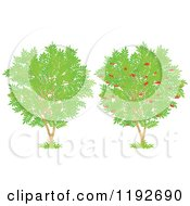 Cartoon Of Fruit Trees With Red Apples And Green Leaves Royalty Free Vector Clipart