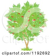 Cartoon Of A Fruit Tree With Red Cherries And Green Leaves Royalty Free Vector Clipart