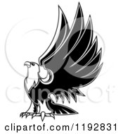 Clipart Of A Black And White Eagle Lifting His Wings 2 Royalty Free Vector Illustration