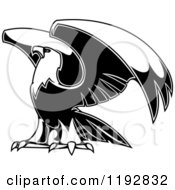Clipart Of A Black And White Eagle Lifting His Wings Royalty Free Vector Illustration