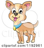 Cartoon Of A Happy Chihuahua Dog With A Blue Collar Royalty Free Vector Clipart