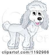 Cartoon Of A Happy Poodle Dog Royalty Free Vector Clipart by visekart