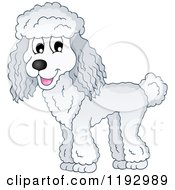 Cartoon Of A Happy White Poodle Dog Royalty Free Vector Clipart