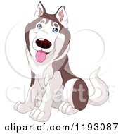 Cartoon Of A Happy Cute Husky Dog Sitting Royalty Free Vector Clipart by Pushkin