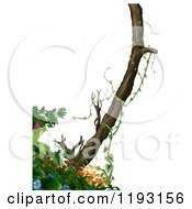 Clipart Of A Tree And Jungle Foliage Over White Royalty Free Illustration