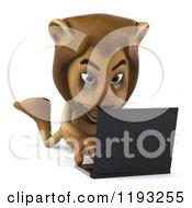 Clipart Of A 3d Lion Holding Using A Laptop On The Floor Royalty Free CGI Illustration