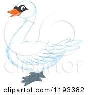 Cute Mute Swan In Profile