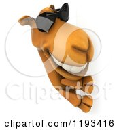 Clipart Of A 3d Camel Wearing Sunglasses And Smiling Around A Sign Royalty Free CGI Illustration