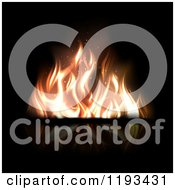 Fire With Flickering Flames On Reflective Black