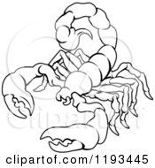 Clipart Of A Black And White Line Drawing Of The Scorpio Scorpion Zodiac Astrology Sign Royalty Free Vector Illustration by AtStockIllustration
