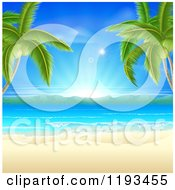 Tropical Beach Framed By Palm Trees With White Sand And Sunshine