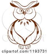 Brown Owl 6