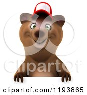 Clipart Of A 3d Happy Bear Mascot Wearing A Hat Over A Sign Royalty Free CGI Illustration