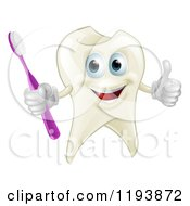 Cartoon Of A Smiling Happy Tooth Mascot Holding A Thumb Up And Toothbrush Royalty Free Vector Clipart by AtStockIllustration