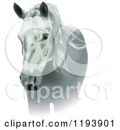 Clipart Of A White Horse Royalty Free Vector Illustration