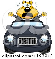 Cartoon Of A Scared Chubby Business Cat Driving A Convertible Car Royalty Free Vector Clipart