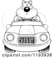 Cartoon Of A Black And White Surprised Chubby Business Cat Driving A Convertible Car Royalty Free Vector Clipart