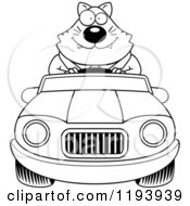 Cartoon Of A Black And White Happy Chubby Business Cat Driving A Convertible Car Royalty Free Vector Clipart