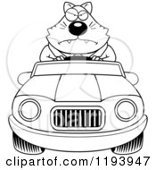 Cartoon Of A Black And White Mad Chubby Business Cat Driving A Convertible Car Royalty Free Vector Clipart