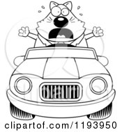 Cartoon Of A Black And White Scared Chubby Business Cat Driving A Convertible Car Royalty Free Vector Clipart