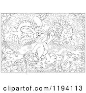 Cartoon Of Black And White Line Art Of A Butterfly Over A Bunny Rabbit Gathering Mushrooms In The Woods Royalty Free Vector Clipart