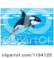 Cartoon Of A Cute Orca Killer Whale Leaping Out Of Water Royalty Free Clipart by Alex Bannykh