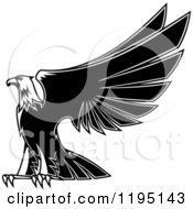 Clipart Of A Black And White Eagle Lifting His Wings 3 Royalty Free Vector Illustration