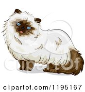 Cartoon Of A Cute Himalayan Cat With Blue Eyes Royalty Free Vector Clipart