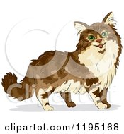 Cartoon Of A Cute Maine Coon Cat With Green Eyes Royalty Free Vector Clipart