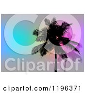 Clipart Of Silhouetted Palm Trees Over Gray With Colorful Lights Royalty Free CGI Illustration by Arena Creative