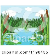 Natural Pond With Cattails And Water Lilies
