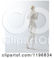 Clipart Of A Rear View Of A 3d Nude Woman With Visible Skeleton On Gray Royalty Free CGI Illustration