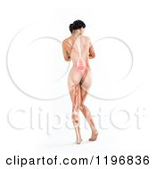 Clipart Of A Rear View Of A 3d Nude Woman With Visible Lower Back Ache On White Royalty Free CGI Illustration