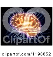 Clipart Of A 3d Glowing Brain With Computer Circut Connections Over Black Royalty Free CGI Illustration