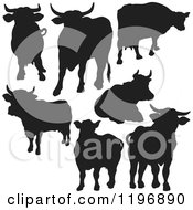 Clipart Of Black Silhouetted Cows Royalty Free Vector Illustration by dero