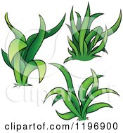 Cartoon Of Tufts Of Green Grass Royalty Free Vector Clipart by dero
