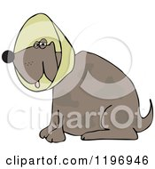 Cartoon Of A Brown Dog Wearing An Elizabethan Colar Cone Royalty Free Vector Clipart