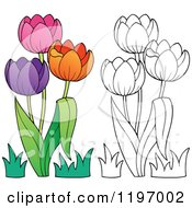 Cartoon Of Colorful And Outlined Tulip Flowers Royalty Free Vector Clipart by visekart
