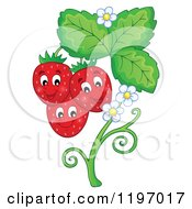 Cartoon Of A Happy Strawberries On A Plant Royalty Free Vector Clipart by visekart