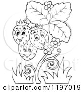 Cartoon Of A Happy Outlined Strawberries On A Plant Royalty Free Vector Clipart by visekart