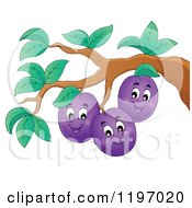 Cartoon Of Happy Plums On A Tree Royalty Free Vector Clipart