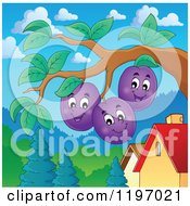 Cartoon Of Happy Plums On The Tree Royalty Free Vector Clipart by visekart