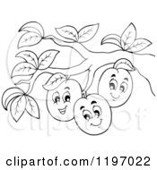 Cartoon Of Happy Outlined Plums On A Tree Royalty Free Vector Clipart by visekart