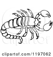 Clipart Of A Black And White Scorpion Royalty Free Vector Illustration by Prawny