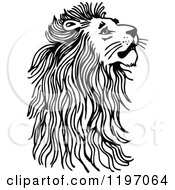 Clipart Of A Black And White Male Lion Looking Up Royalty Free Vector Illustration
