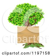 Cartoon Of A Wooden Sign Hanging On A Tree Royalty Free Vector Clipart