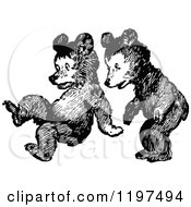 Clipart Of Vintage Black And White Bear Cubs Playing Royalty Free Vector Illustration