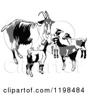 Clipart Of A Black And White Vintage Goat Family Royalty Free Vector Illustration by Prawny Vintage