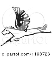 Clipart Of A Winged Pegasus Horse Flying Black And White Woodcut Royalty Free Vector Illustration
